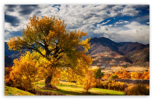 Beautiful Autumn Scenery Colorado ❤ 4K UHD Wallpaper for Wide 16:10 5:3 Widescreen WHXGA WQXGA WUXGA WXGA WGA ; 4K UHD 16:9 Ultra High Definition 2160p 1440p 1080p 900p 720p ; UHD 16:9 2160p 1440p 1080p 900p 720p ; Standard 4:3 5:4 3:2 Fullscreen UXGA XGA SVGA QSXGA SXGA DVGA HVGA HQVGA ( Apple PowerBook G4 iPhone 4 3G 3GS iPod Touch ) ; Tablet 1:1 ; iPad 1/2/Mini ; Mobile 4:3 5:3 3:2 16:9 5:4 - UXGA XGA SVGA WGA DVGA HVGA HQVGA ( Apple PowerBook G4 iPhone 4 3G 3GS iPod Touch ) 2160p 1440p 1080p 900p 720p QSXGA SXGA ;