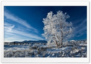 Beautiful Blue Winter Sky HD Wide Wallpaper for Widescreen
