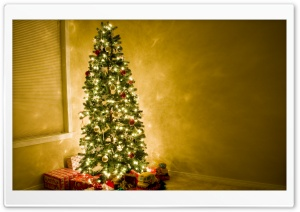 Beautiful Christmas Tree HD Wide Wallpaper for Widescreen