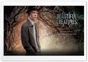 Beautiful Creatures - Link HD Wide Wallpaper for Widescreen