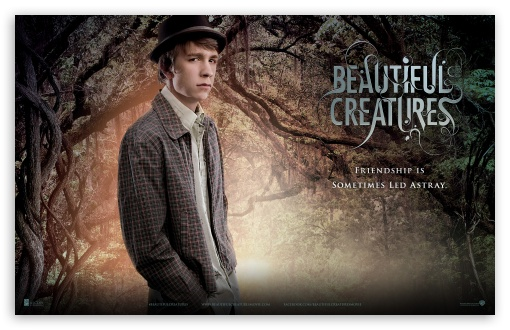 Beautiful Creatures - Link HD wallpaper for Wide 16:10 5:3 Widescreen WHXGA WQXGA WUXGA WXGA WGA ; Standard 4:3 5:4 Fullscreen UXGA XGA SVGA QSXGA SXGA ; Tablet 1:1 ; iPad 1/2/Mini ; Mobile 4:3 5:3 3:2 5:4 - UXGA XGA SVGA WGA DVGA HVGA HQVGA devices ( Apple PowerBook G4 iPhone 4 3G 3GS iPod Touch ) QSXGA SXGA ;