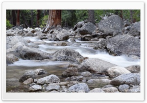 Beautiful Creek HD Wide Wallpaper for Widescreen