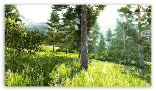 Beautiful Forest ❤ 4K UHD Wallpaper for 4K UHD 16:9 Ultra High Definition 2160p 1440p 1080p 900p 720p ; Standard 4:3 5:4 3:2 Fullscreen UXGA XGA SVGA QSXGA SXGA DVGA HVGA HQVGA ( Apple PowerBook G4 iPhone 4 3G 3GS iPod Touch ) ; iPad 1/2/Mini ; Mobile 4:3 3:2 16:9 5:4 - UXGA XGA SVGA DVGA HVGA HQVGA ( Apple PowerBook G4 iPhone 4 3G 3GS iPod Touch ) 2160p 1440p 1080p 900p 720p QSXGA SXGA ;
