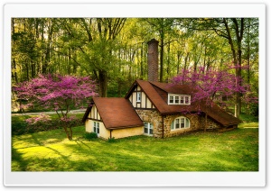 Beautiful Forest House, Spring Ultra HD Wallpaper for 4K UHD Widescreen desktop, tablet & smartphone