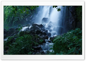 Beautiful Forest Waterfall, Summer HD Wide Wallpaper for Widescreen