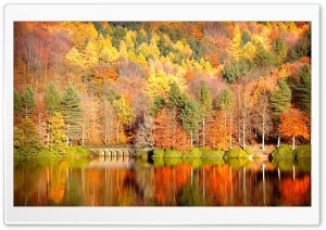 Beautiful Lake Reflection, Autumn HD Wide Wallpaper for 4K UHD Widescreen desktop & smartphone