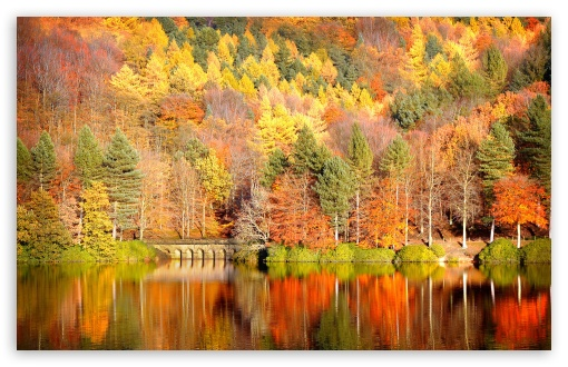 Beautiful Lake Reflection, Autumn HD wallpaper for Wide 16:10 5:3 Widescreen WHXGA WQXGA WUXGA WXGA WGA ; HD 16:9 High Definition WQHD QWXGA 1080p 900p 720p QHD nHD ; Standard 4:3 5:4 3:2 Fullscreen UXGA XGA SVGA QSXGA SXGA DVGA HVGA HQVGA devices ( Apple PowerBook G4 iPhone 4 3G 3GS iPod Touch ) ; Tablet 1:1 ; iPad 1/2/Mini ; Mobile 4:3 5:3 3:2 16:9 5:4 - UXGA XGA SVGA WGA DVGA HVGA HQVGA devices ( Apple PowerBook G4 iPhone 4 3G 3GS iPod Touch ) WQHD QWXGA 1080p 900p 720p QHD nHD QSXGA SXGA ; Dual 16:10 5:3 4:3 5:4 WHXGA WQXGA WUXGA WXGA WGA UXGA XGA SVGA QSXGA SXGA ;
