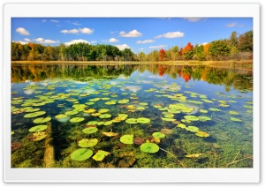 Beautiful Lake Scenery, Autumn HD Wide Wallpaper for Widescreen