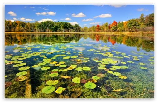 Beautiful Lake Scenery, Autumn HD wallpaper for Wide 16:10 5:3 Widescreen WHXGA WQXGA WUXGA WXGA WGA ; HD 16:9 High Definition WQHD QWXGA 1080p 900p 720p QHD nHD ; Standard 4:3 5:4 3:2 Fullscreen UXGA XGA SVGA QSXGA SXGA DVGA HVGA HQVGA devices ( Apple PowerBook G4 iPhone 4 3G 3GS iPod Touch ) ; Tablet 1:1 ; iPad 1/2/Mini ; Mobile 4:3 5:3 3:2 16:9 5:4 - UXGA XGA SVGA WGA DVGA HVGA HQVGA devices ( Apple PowerBook G4 iPhone 4 3G 3GS iPod Touch ) WQHD QWXGA 1080p 900p 720p QHD nHD QSXGA SXGA ; Dual 16:10 4:3 5:4 WHXGA WQXGA WUXGA WXGA UXGA XGA SVGA QSXGA SXGA ;