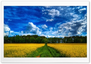 Beautiful Landscape HDR HD Wide Wallpaper for Widescreen