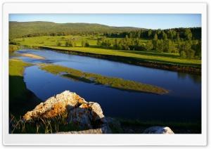 Beautiful Meadow HD Wide Wallpaper for 4K UHD Widescreen desktop & smartphone