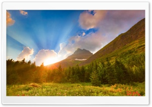 Beautiful Morning HD Wide Wallpaper for Widescreen