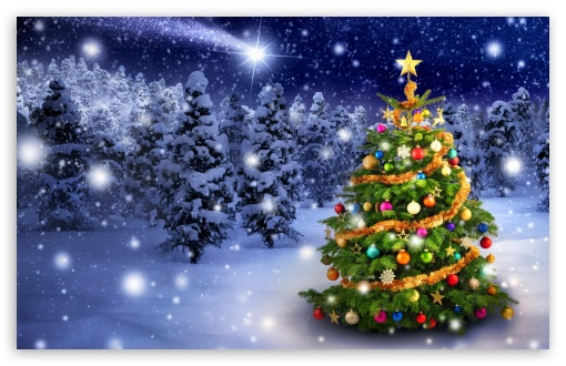 Beautiful Outdoor Christmas Tree UltraHD Wallpaper for Wide 16:10 5:3 Widescreen WHXGA WQXGA WUXGA WXGA WGA ; 8K UHD TV 16:9 Ultra High Definition 2160p 1440p 1080p 900p 720p ; UHD 16:9 2160p 1440p 1080p 900p 720p ; Standard 4:3 5:4 3:2 Fullscreen UXGA XGA SVGA QSXGA SXGA DVGA HVGA HQVGA ( Apple PowerBook G4 iPhone 4 3G 3GS iPod Touch ) ; Smartphone 5:3 WGA ; Tablet 1:1 ; iPad 1/2/Mini ; Mobile 4:3 5:3 3:2 16:9 5:4 - UXGA XGA SVGA WGA DVGA HVGA HQVGA ( Apple PowerBook G4 iPhone 4 3G 3GS iPod Touch ) 2160p 1440p 1080p 900p 720p QSXGA SXGA ;