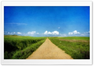 Beautiful Path - Grass Fields HD Wide Wallpaper for 4K UHD Widescreen desktop & smartphone