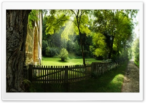 Beautiful Pathway, Summer HD Wide Wallpaper for Widescreen