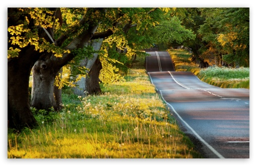 Beautiful Road ❤ 4K UHD Wallpaper for Wide 16:10 5:3 Widescreen WHXGA WQXGA WUXGA WXGA WGA ; 4K UHD 16:9 Ultra High Definition 2160p 1440p 1080p 900p 720p ; Standard 4:3 5:4 3:2 Fullscreen UXGA XGA SVGA QSXGA SXGA DVGA HVGA HQVGA ( Apple PowerBook G4 iPhone 4 3G 3GS iPod Touch ) ; iPad 1/2/Mini ; Mobile 4:3 5:3 3:2 16:9 5:4 - UXGA XGA SVGA WGA DVGA HVGA HQVGA ( Apple PowerBook G4 iPhone 4 3G 3GS iPod Touch ) 2160p 1440p 1080p 900p 720p QSXGA SXGA ; Dual 5:4 QSXGA SXGA ;