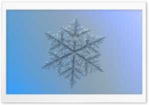 Beautiful Snowflake Magnified HD Wide Wallpaper for Widescreen