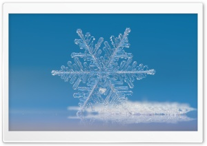 Beautiful Snowflake Photography HD Wide Wallpaper for Widescreen