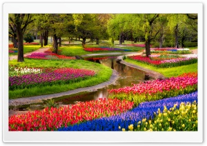 Beautiful Spring Garden HD Wide Wallpaper for Widescreen