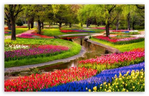 Beautiful Spring Garden 4K HD Desktop Wallpaper For 4K