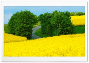 Beautiful Spring Landscape HD Wide Wallpaper for Widescreen