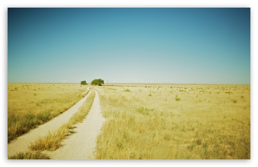 Beautiful Summer Landscape With A Field Path HD wallpaper for Standard 4:3 5:4 Fullscreen UXGA XGA SVGA QSXGA SXGA ; Wide 16:10 5:3 Widescreen WHXGA WQXGA WUXGA WXGA WGA ; HD 16:9 High Definition WQHD QWXGA 1080p 900p 720p QHD nHD ; Other 3:2 DVGA HVGA HQVGA devices ( Apple PowerBook G4 iPhone 4 3G 3GS iPod Touch ) ; Mobile VGA WVGA iPhone iPad PSP Phone - VGA QVGA Smartphone ( PocketPC GPS iPod Zune BlackBerry HTC Samsung LG Nokia Eten Asus ) WVGA WQVGA Smartphone ( HTC Samsung Sony Ericsson LG Vertu MIO ) HVGA Smartphone ( Apple iPhone iPod BlackBerry HTC Samsung Nokia ) Sony PSP Zune HD Zen ; Tablet 2 Android ; Dual 4:3 5:4 16:10 5:3 16:9 UXGA XGA SVGA QSXGA SXGA WHXGA WQXGA WUXGA WXGA WGA WQHD QWXGA 1080p 900p 720p QHD nHD ;