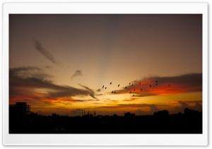 Beautiful Sunset, Bangladesh Ultra HD Wallpaper for 4K UHD Widescreen desktop, tablet & smartphone