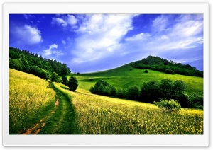 Beautiful Surroundings HD Wide Wallpaper for Widescreen