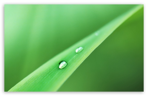 Beautiful Water Drop Bokeh HD desktop wallpaper : High Definition