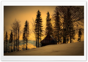 Beautiful Winter Twilight HD Wide Wallpaper for Widescreen