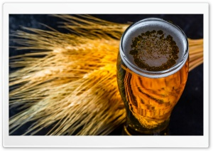Beer Glass, Autumn Ultra HD Wallpaper for 4K UHD Widescreen desktop, tablet & smartphone