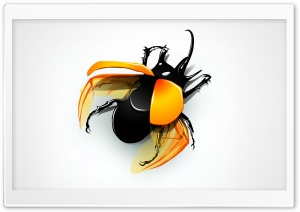 Beetle HD Wide Wallpaper for Widescreen