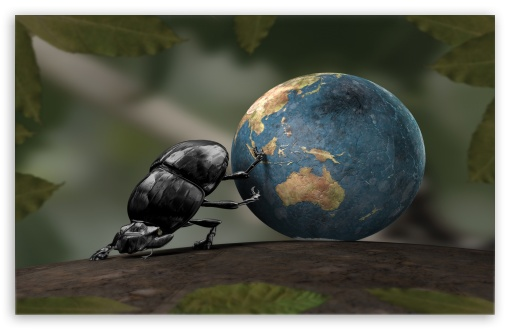 Beetle Illustration ❤ 4K UHD Wallpaper for Wide 16:10 5:3 Widescreen WHXGA WQXGA WUXGA WXGA WGA ; 4K UHD 16:9 Ultra High Definition 2160p 1440p 1080p 900p 720p ; Standard 4:3 5:4 3:2 Fullscreen UXGA XGA SVGA QSXGA SXGA DVGA HVGA HQVGA ( Apple PowerBook G4 iPhone 4 3G 3GS iPod Touch ) ; iPad 1/2/Mini ; Mobile 4:3 5:3 3:2 16:9 5:4 - UXGA XGA SVGA WGA DVGA HVGA HQVGA ( Apple PowerBook G4 iPhone 4 3G 3GS iPod Touch ) 2160p 1440p 1080p 900p 720p QSXGA SXGA ; Dual 5:4 QSXGA SXGA ;