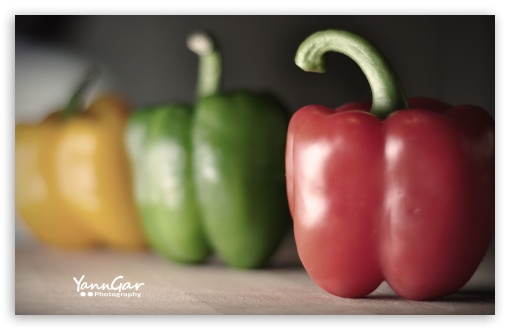 Bell Peppers HD wallpaper for Wide 16:10 5:3 Widescreen WHXGA WQXGA WUXGA WXGA WGA ; HD 16:9 High Definition WQHD QWXGA 1080p 900p 720p QHD nHD ; UHD 16:9 WQHD QWXGA 1080p 900p 720p QHD nHD ; Standard 3:2 Fullscreen DVGA HVGA HQVGA devices ( Apple PowerBook G4 iPhone 4 3G 3GS iPod Touch ) ; Mobile 5:3 3:2 16:9 - WGA DVGA HVGA HQVGA devices ( Apple PowerBook G4 iPhone 4 3G 3GS iPod Touch ) WQHD QWXGA 1080p 900p 720p QHD nHD ;