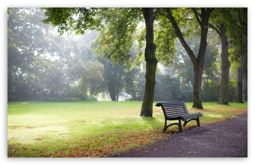 Bench HD wallpaper for Wide 16:10 5:3 Widescreen WHXGA WQXGA WUXGA WXGA WGA ; HD 16:9 High Definition WQHD QWXGA 1080p 900p 720p QHD nHD ; UHD 16:9 WQHD QWXGA 1080p 900p 720p QHD nHD ; Standard 4:3 5:4 3:2 Fullscreen UXGA XGA SVGA QSXGA SXGA DVGA HVGA HQVGA devices ( Apple PowerBook G4 iPhone 4 3G 3GS iPod Touch ) ; Smartphone 5:3 WGA ; Tablet 1:1 ; iPad 1/2/Mini ; Mobile 4:3 5:3 3:2 16:9 5:4 - UXGA XGA SVGA WGA DVGA HVGA HQVGA devices ( Apple PowerBook G4 iPhone 4 3G 3GS iPod Touch ) WQHD QWXGA 1080p 900p 720p QHD nHD QSXGA SXGA ;