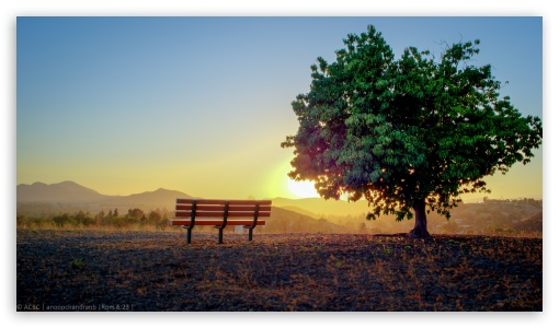 Bench ❤ 4K UHD Wallpaper for 4K UHD 16:9 Ultra High Definition 2160p 1440p 1080p 900p 720p ; Mobile 16:9 - 2160p 1440p 1080p 900p 720p ;