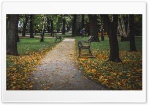 Bench Ultra HD Wallpaper for 4K UHD Widescreen desktop, tablet & smartphone