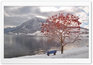 Bench By The Lake HD Wide Wallpaper for Widescreen
