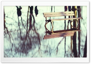 Bench In Flooded Park HD Wide Wallpaper for Widescreen
