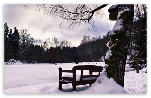 Bench In Winter HD wallpaper for Wide 16:10 5:3 Widescreen WHXGA WQXGA WUXGA WXGA WGA ; HD 16:9 High Definition WQHD QWXGA 1080p 900p 720p QHD nHD ; Standard 4:3 5:4 3:2 Fullscreen UXGA XGA SVGA QSXGA SXGA DVGA HVGA HQVGA devices ( Apple PowerBook G4 iPhone 4 3G 3GS iPod Touch ) ; Tablet 1:1 ; iPad 1/2/Mini ; Mobile 4:3 5:3 3:2 16:9 5:4 - UXGA XGA SVGA WGA DVGA HVGA HQVGA devices ( Apple PowerBook G4 iPhone 4 3G 3GS iPod Touch ) WQHD QWXGA 1080p 900p 720p QHD nHD QSXGA SXGA ;