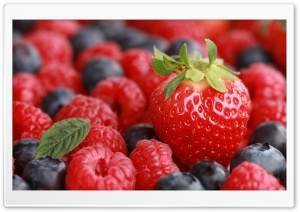 Berries HD Wide Wallpaper for Widescreen