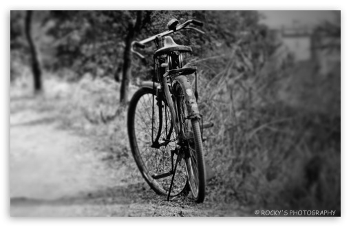 BICYCLE ❤ 4K UHD Wallpaper for Wide 16:10 Widescreen WHXGA WQXGA WUXGA WXGA ; 4K UHD 16:9 Ultra High Definition 2160p 1440p 1080p 900p 720p ; UHD 16:9 2160p 1440p 1080p 900p 720p ; Standard 3:2 Fullscreen DVGA HVGA HQVGA ( Apple PowerBook G4 iPhone 4 3G 3GS iPod Touch ) ; Tablet 1:1 ; iPad 1/2/Mini ; Mobile 4:3 5:3 3:2 16:9 - UXGA XGA SVGA WGA DVGA HVGA HQVGA ( Apple PowerBook G4 iPhone 4 3G 3GS iPod Touch ) 2160p 1440p 1080p 900p 720p ;