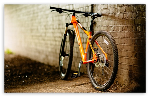 Bicycle ❤ 4K UHD Wallpaper for Wide 16:10 5:3 Widescreen WHXGA WQXGA WUXGA WXGA WGA ; 4K UHD 16:9 Ultra High Definition 2160p 1440p 1080p 900p 720p ; UHD 16:9 2160p 1440p 1080p 900p 720p ; Standard 4:3 5:4 3:2 Fullscreen UXGA XGA SVGA QSXGA SXGA DVGA HVGA HQVGA ( Apple PowerBook G4 iPhone 4 3G 3GS iPod Touch ) ; Tablet 1:1 ; iPad 1/2/Mini ; Mobile 4:3 5:3 3:2 16:9 5:4 - UXGA XGA SVGA WGA DVGA HVGA HQVGA ( Apple PowerBook G4 iPhone 4 3G 3GS iPod Touch ) 2160p 1440p 1080p 900p 720p QSXGA SXGA ;