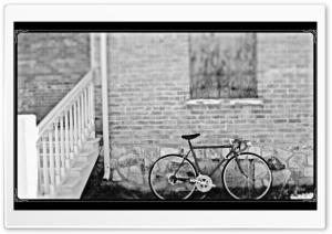 Bicycle Black & White HD Wide Wallpaper for Widescreen