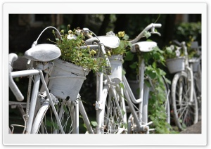 Bicycle Fence HD Wide Wallpaper for Widescreen