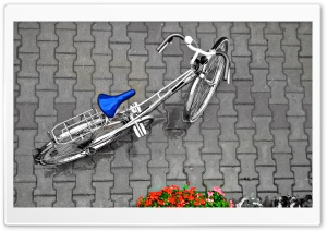 Bicycle In The Rain HD Wide Wallpaper for Widescreen