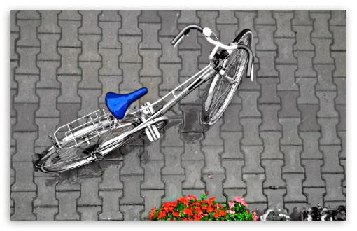 Bicycle In The Rain ❤ 4K UHD Wallpaper for Wide 16:10 Widescreen WHXGA WQXGA WUXGA WXGA ; Standard 4:3 5:4 3:2 Fullscreen UXGA XGA SVGA QSXGA SXGA DVGA HVGA HQVGA ( Apple PowerBook G4 iPhone 4 3G 3GS iPod Touch ) ; Tablet 1:1 ; iPad 1/2/Mini ; Mobile 4:3 3:2 5:4 - UXGA XGA SVGA DVGA HVGA HQVGA ( Apple PowerBook G4 iPhone 4 3G 3GS iPod Touch ) QSXGA SXGA ;