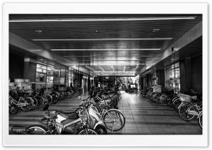 Bicycle Parking HD Wide Wallpaper for 4K UHD Widescreen desktop & smartphone