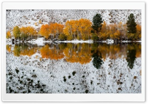 Bishop Creek California Winter HD Wide Wallpaper for Widescreen