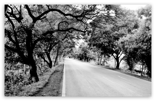 Black and White Road HD wallpaper for Wide 16:10 5:3 Widescreen WHXGA WQXGA WUXGA WXGA WGA ; HD 16:9 High Definition WQHD QWXGA 1080p 900p 720p QHD nHD ; UHD 16:9 WQHD QWXGA 1080p 900p 720p QHD nHD ; Standard 4:3 5:4 3:2 Fullscreen UXGA XGA SVGA QSXGA SXGA DVGA HVGA HQVGA devices ( Apple PowerBook G4 iPhone 4 3G 3GS iPod Touch ) ; Tablet 1:1 ; iPad 1/2/Mini ; Mobile 4:3 5:3 3:2 16:9 5:4 - UXGA XGA SVGA WGA DVGA HVGA HQVGA devices ( Apple PowerBook G4 iPhone 4 3G 3GS iPod Touch ) WQHD QWXGA 1080p 900p 720p QHD nHD QSXGA SXGA ; Dual 4:3 5:4 UXGA XGA SVGA QSXGA SXGA ;